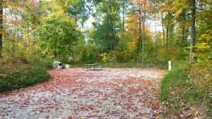 vacant campsite in autumn at moose hillock resort in lake george ny