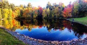 Fall scenery around pond