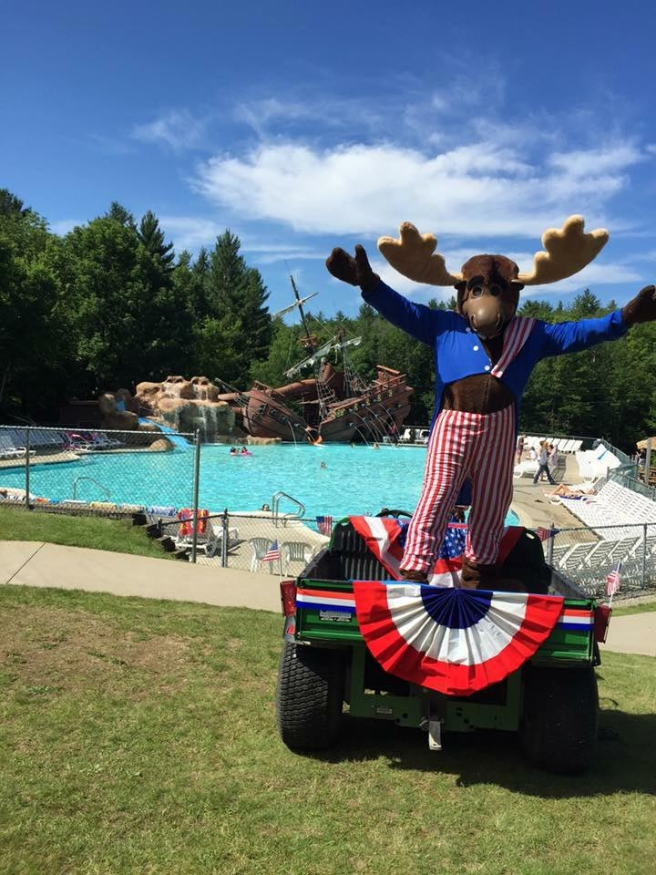 moose mascot standing in front of pool