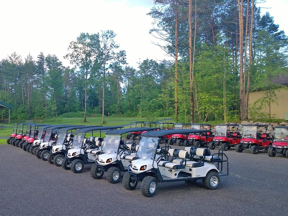 Parked Golf carts lined up