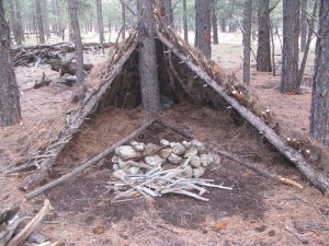 Tent made of sticks and logs