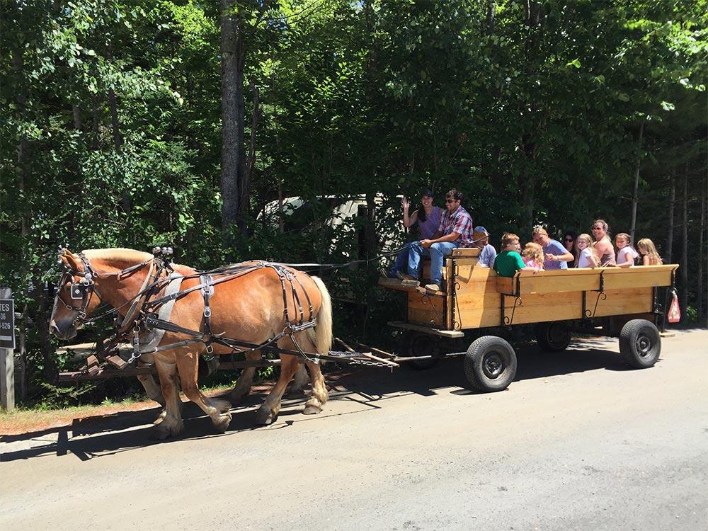 2 horses pulling wagon